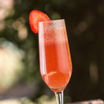Scarlet Cocktail