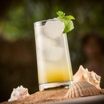 Mango Negro Cocktail